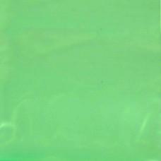 Green Zip Bag
